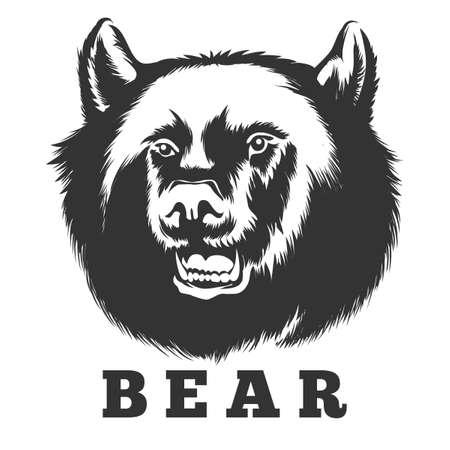 Hand drawn bear. Wild bear head vector illustration. Illustration