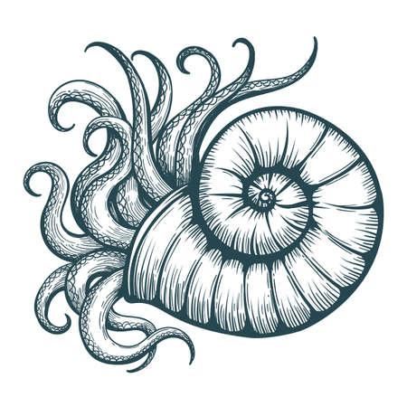 Los tentáculos dibujados a mano sobresalen de la concha de mar en el estilo del tatuaje. Ilustración vectorial