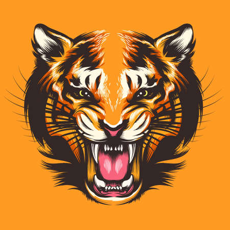 Hand DrawnTiger Head. Vector illustration design