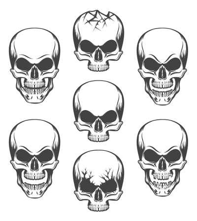 Human skulls set drawn in engraving style. Vector illustration. Illustration