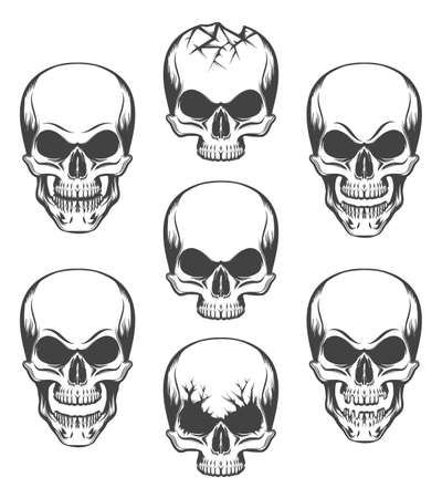 Human skulls set drawn in engraving style. Vector illustration. Ilustração
