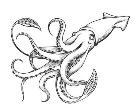Calamar gigante dibujado en estilo tatuaje grabado. Ilustración de vector.