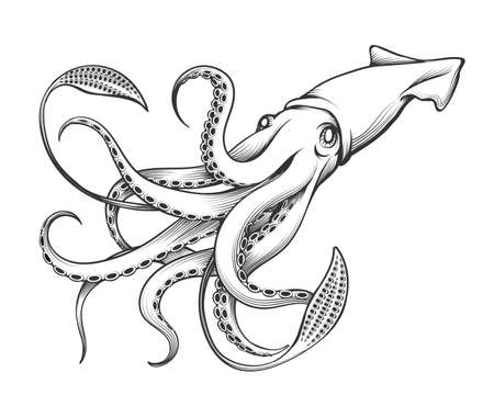 Giant Squid drawn in Engraving tattoo style. Vector Illustration.