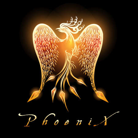 Fire burning Phoenix Bird on black background. Vector Illustration.