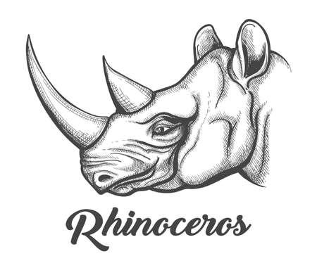 Tête de rhinocéros dessinée dans le style de gravure. Illustration vectorielle. Vecteurs