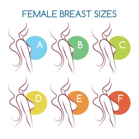 Siluetas de mujer con diferentes tamaños de la A a la F. Bustos femeninos de pequeño a grande en vista lateral. Ilustración de vector.