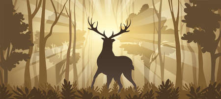 Deer Silhouette in rays of sunlight on Deep Forest Background. Horizontal vector Illustration