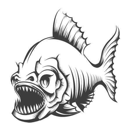 Piranha Fish in Engraving style isolated on white. Vector illustration.