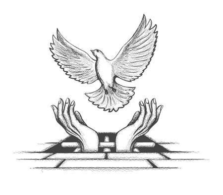 Prisoners Hands releasing Dove from jail. Freedom concept Tattoo. Vector illustration.