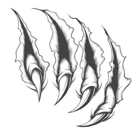 Tattoo of surface scratched by monster claws drawn in engraving style. Vector illustration.