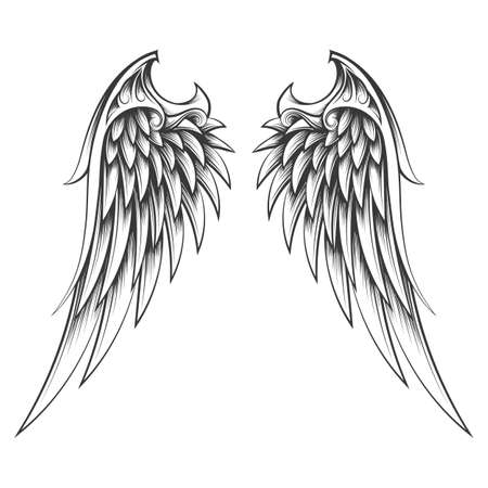 Tattoo of Wings Drawn in engraving Style on white background. Vector illustration.