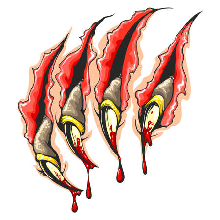 Colorful Tattoo of Monster Claws Scratches with drops of blood isolated on white. Vector Illustration