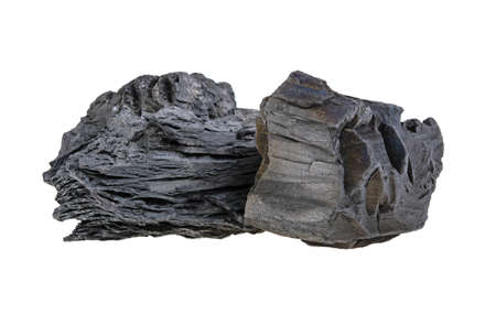 Natural wood charcoal isolated on a white background. Hard wood charcoal.