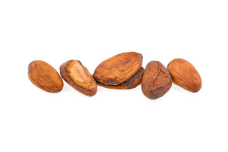 cocoa beans on a white background, isolated.