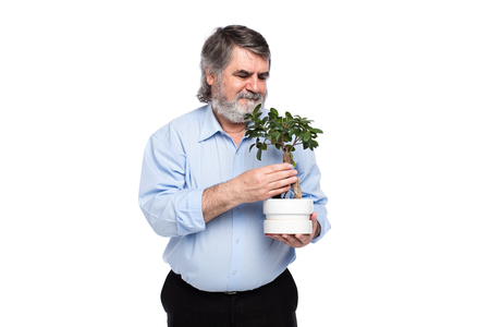 gray beard: old men with gray beard holding a small tree in hand, isolated on white