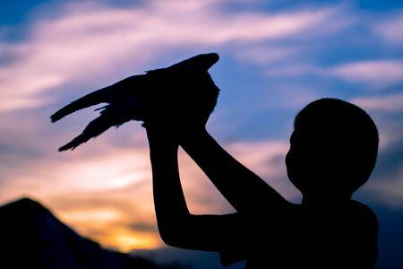 devout: Silhouette of a boy holding a bird. Dove. Sunset sky. Stock Photo