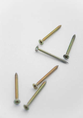 screw head: Bolts on white canvas background