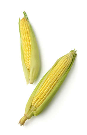Ears of corn isolated on white background. Above view. photo