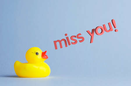 miss you: Yellow rubber duck says:  miss you!  over blue background