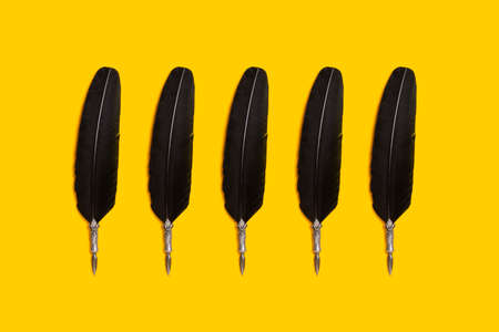 Black quill pens organized in a row over yellow background