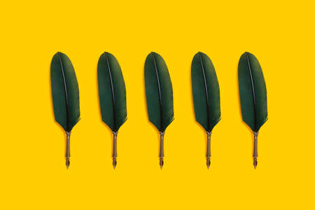 Green quill pens organized in a row over yellow background Foto de archivo - 118563980