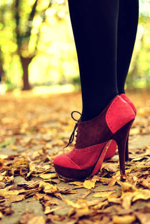 high heel shoes: Legs with pink high-heels in park
