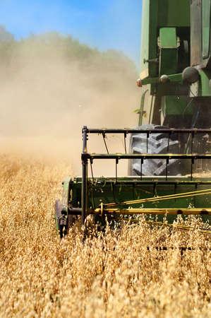 Combinar m�quinas de colheita de trigo coleta dos campos