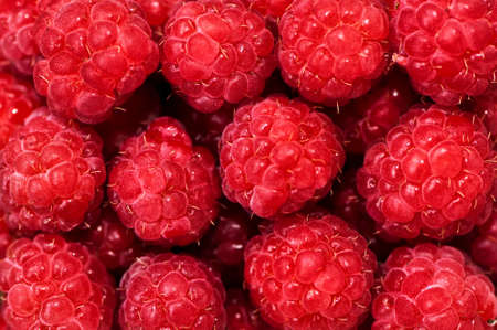 organic raspberry: Fresh organic raspberry, bio-fruits from local farm and garden