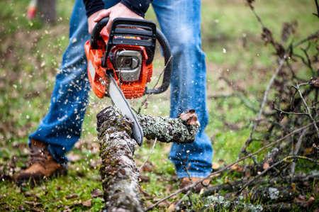 Ouvrier de bûcheron en tenue de protection complète couper du bois dans la forêt avec une tronçonneuse professionnelle Banque d'images