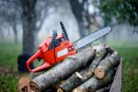 chainsaw: gasoline powered professional chainsaw on pile of cut wood