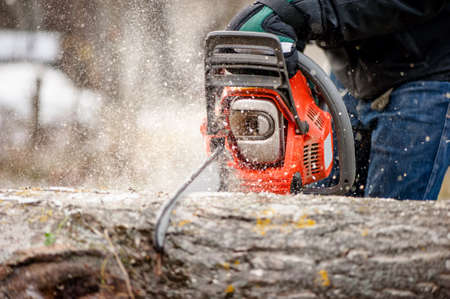 Close-up of man cutting trees from forest or garden with chainsaw and tools