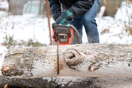 Man cutting trees and fire wood during winter in garden photo
