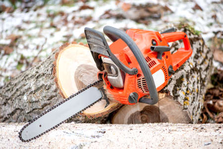 chainsaw: gasoline powered professional chainsaw on pile of cut wood against winter and snow background