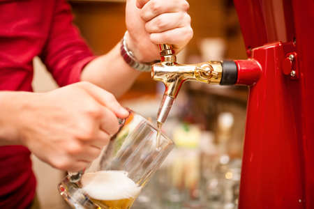 pilsner beer glass: bartender pouring beer draft in pub, bar or nightclub