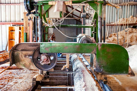 industrial wood production factory - band saw sawmill being used to cut a cedar log into dimension lumber photo