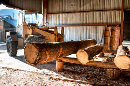 lumber industry: industrial log loader operating at industrial wood production factory Stock Photo