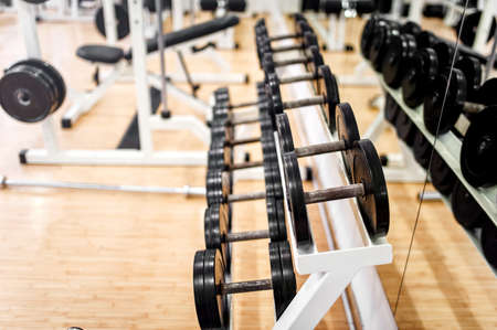 school gym: dumbbells in modern sports club, gym or fitness center  Weight Training Equipment