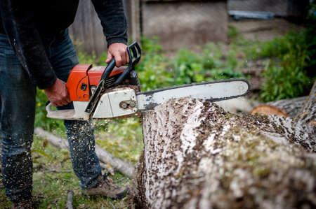 Mann Schneiden von Bäumen mit Hilfe eines elektrischen Kettensäge und professionelle Werkzeuge