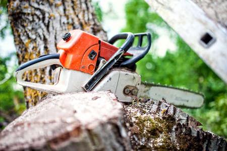 新鮮なカット木材や木材の山の上の専門のチェーンソー 写真素材