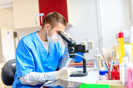 chromatograph: chemical analyst working on examination of samples using a microscope and tablet Stock Photo