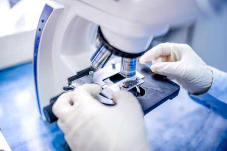 microscope: primer plano de las manos del científico con el microscopio, las muestras que examinan y líquidos Foto de archivo