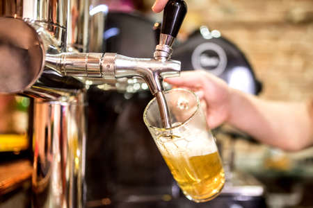 barman hand at beer tap pouring a draught lager beer serving in a restaurant or pub Standard-Bild