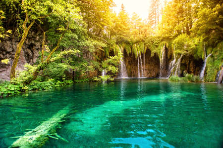 Naturaleza de las maravillas, cascada lago en el parque nacional en un día soleado de verano con la luz del sol. Cascadas en el bosque profundo, Parque Nacional de Plitvice