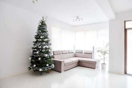 Modern living room space, comfortable sofa and christmas tree in large suite. Contemporary designer mansion