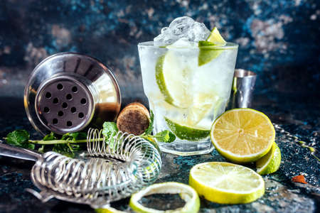 Gin tonic alcoholic cocktail with ice and mint. Cocktail drinks served at restaurant, pub or bar