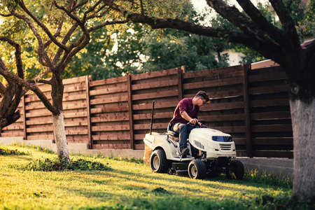 seeding: Man using lawn tractor for mowing grass in garden. Landscaping works with professional tools