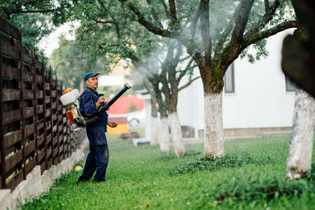 Man spraying toxic pesticides and ierbicides in fruit orchard
