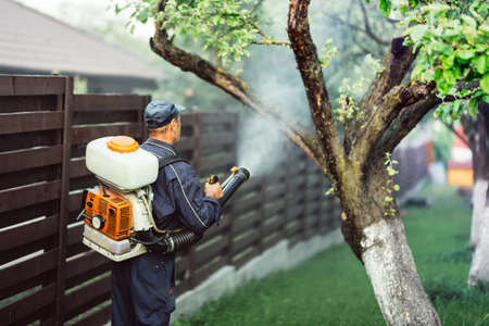 agricultural details - farmer working, spraying pesticides in fruit orchard