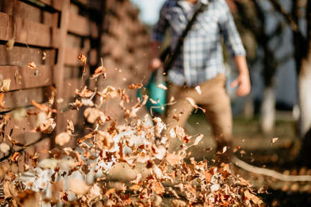 close up details of leaves swirling up when worker uses home leaf blower Banque d'images