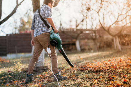 home gardening industry - male using leaf blower during sunset